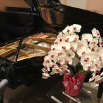 東京ピアノマーケット 第一回ミニコンサート