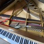 ザウター グランドピアノ