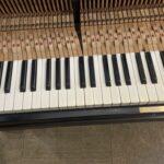 象牙鍵盤漂白